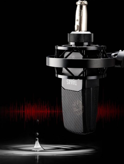 Takstar-tak45-studio-mic